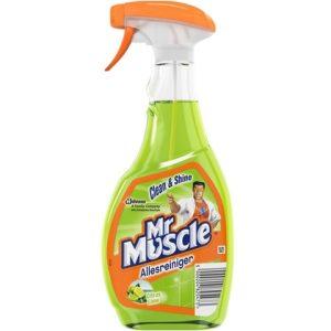 Mr. Muscle Allesreiniger Spray 500 ml 5000204825473