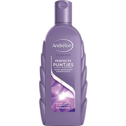 Andrelon Shampoo Perfecte Puntjes 300 ml 8710447321881